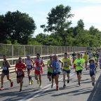 Fulgor Run - Raimondi guida 1100 formiche dal ponte di Cairate