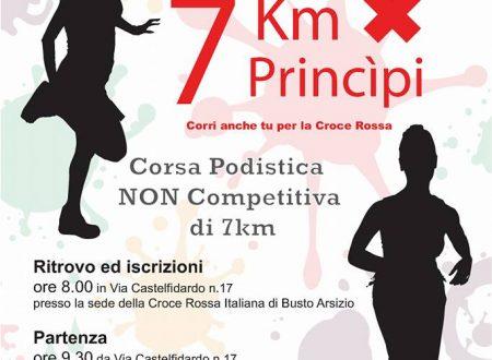 7 km X 7 princìpi